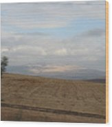 The Road To Galilee Wood Print