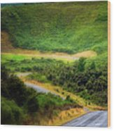 The Road To Milford Sound Wood Print