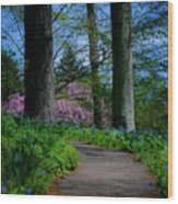 The Road To Peace And Quiet Wood Print