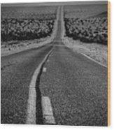 The Road To Shoshone Wood Print