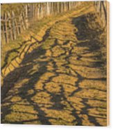 The Road To The Pasture Wood Print