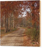 The Road Untraveled Wood Print