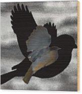 The Robin Flight  Wood Print