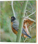 The Robin Wood Print