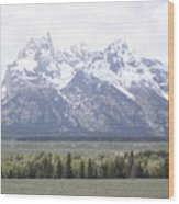 The Rockeis Wood Print
