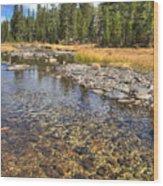 The Rocks Of Rock Creek Wood Print