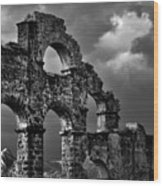 The Roman Aqueduct At Aspendos, Turkey.    Black And White Wood Print