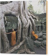 The Roots Of A Strangler Fig Creep Wood Print by Paul Chesley
