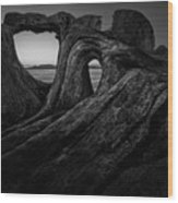 The Roots Of The Sleeping Giant Bw Wood Print
