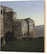 The Ruins Jezreel Holy Land Wood Print