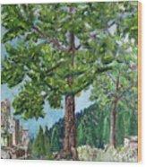 The Ruins Wood Print