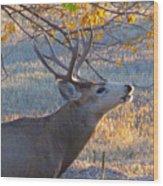 The Rut  Wood Print