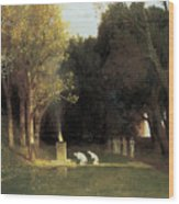 The Sacred Wood Wood Print