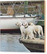 The Sailing Club Wood Print
