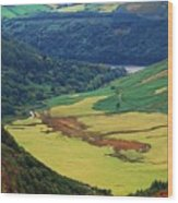 The Sally Gap Wicklow Wood Print