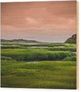 The Salt Marsh Wood Print