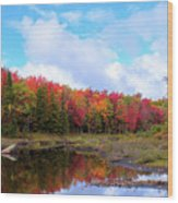 The Scarlet Reds Of Autumn Wood Print