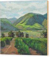 The Scent Of Citrus - Santa Paula Citrus Grove Central Coast Landscape Wood Print