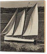 The Schooner Adirondack II Antiqued Wood Print