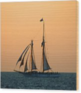 The Schooner America Wood Print