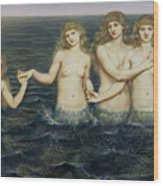 The Sea Maidens Wood Print