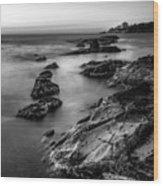 The Sea Serpent Wood Print