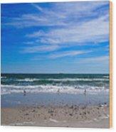 The Seagull Dance Wood Print