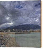 The Seasons Sandpoint Wood Print