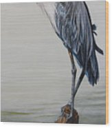 The Sentinel - Portrait Of A Great Blue Heron Wood Print