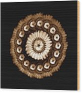 The Sepia Feather And Beadwork Of Flower Wood Print by Jacqueline Migell