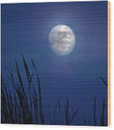 The Seventh Moon Wood Print