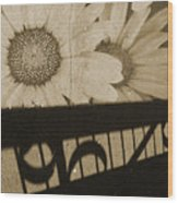 The Shadow Flowers Wood Print