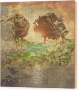 The Shadow Of Olives Wood Print