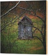 The Shed Wood Print by Michael L Kimble