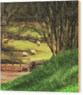 The Sheep's In The Meadow Wood Print
