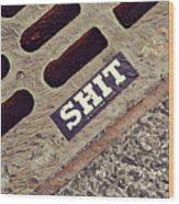 The Shit You See In New York City Wood Print