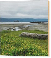 The Shoreline Wood Print