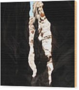 The Sig Of Petra Wood Print by Dawn Mathews