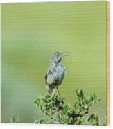 The Singing Birdie  Wood Print