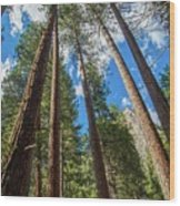 The Sky's The Limit Wood Print