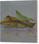 The Sleeping Leaf Wood Print