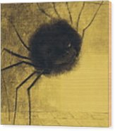 The Smiling Spider Wood Print