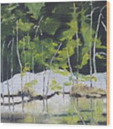 The Snow By The Pond Wood Print