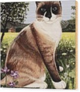 The Snowshoe Cat Wood Print