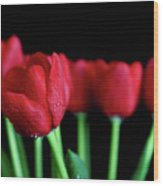 The Softer Tulips Wood Print by Tracy Hall