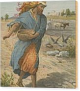 The Sower Sowing The Seed Wood Print by English School