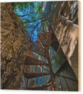 The Spiral Staircase Of The Abbandoned Children Summer Vacation Building - La Scala A Chiocciola Del Wood Print
