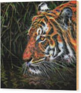 The Spirit Of The Tiger  Wood Print