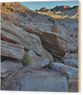 The Spotlight Fades At Valley Of Fire Wood Print
