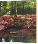 The Spring In Washington Wood Print